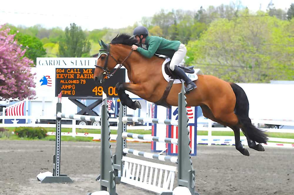 Few Amazing Horse Show In The World