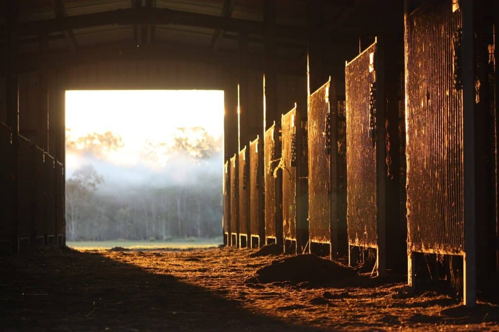 Things To Keep In Mind While Building A Horse Stable