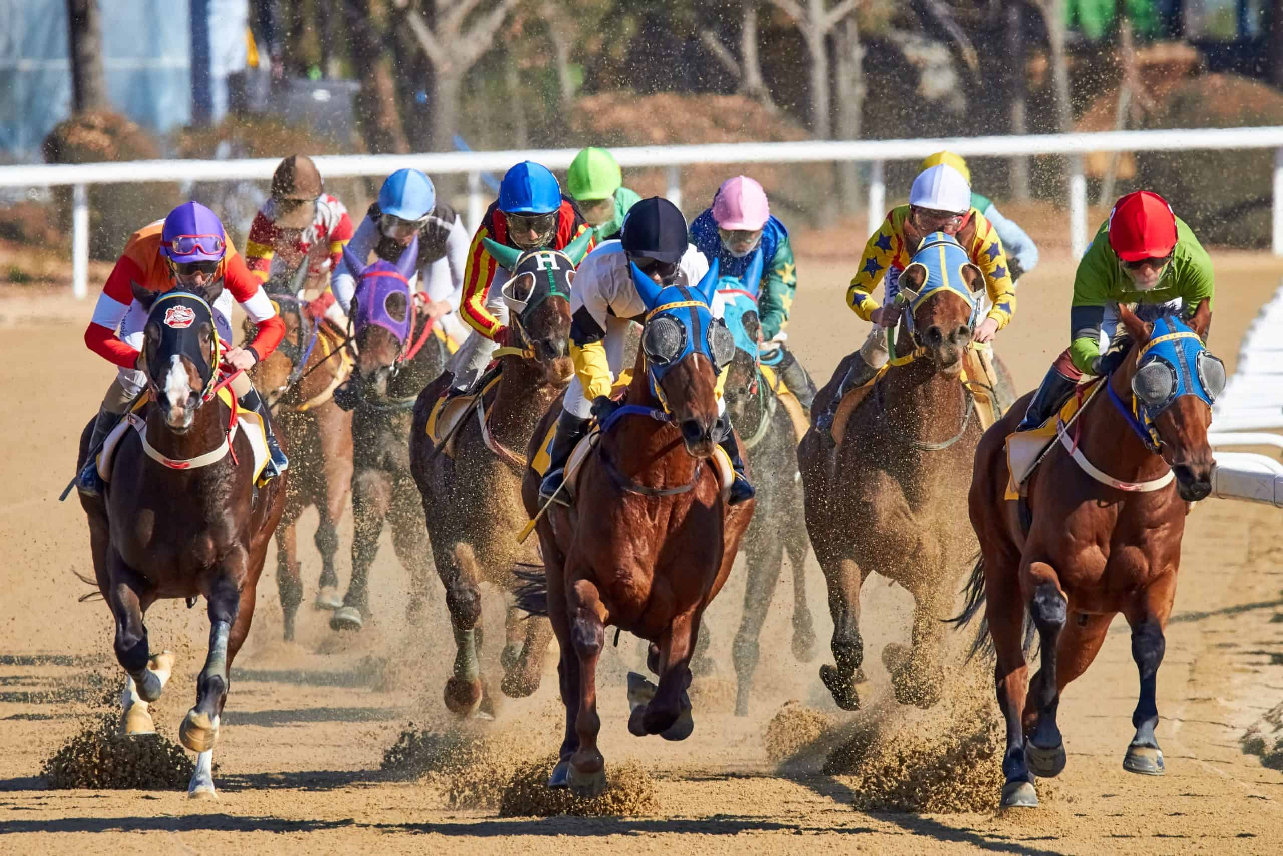 Horse Racing Betting Systems Are Not Just For Racehorses