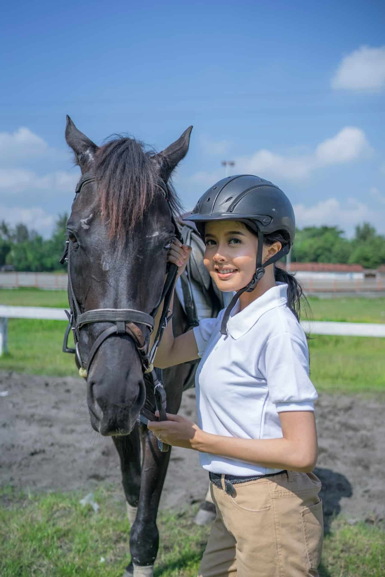 What Do You Need to Know to Find the Best Horse to Buy ?