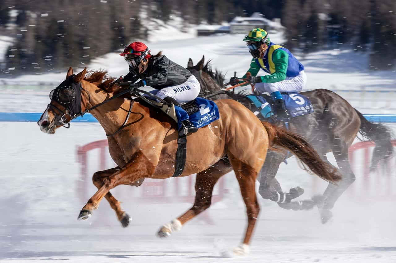 Horse Racing Handicapping Systems - Take Them to the Next Level