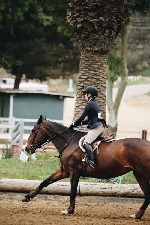 What To Know About Horse Riding