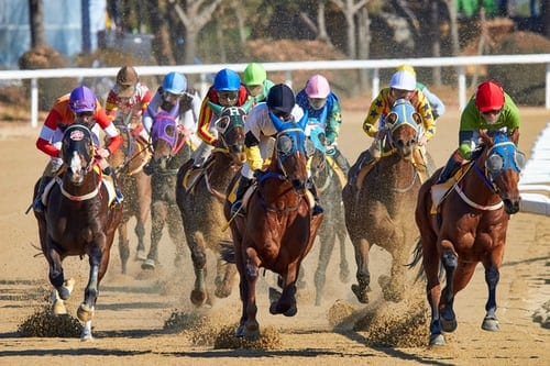 Three Things About Horse Racing That Are Critical To Know