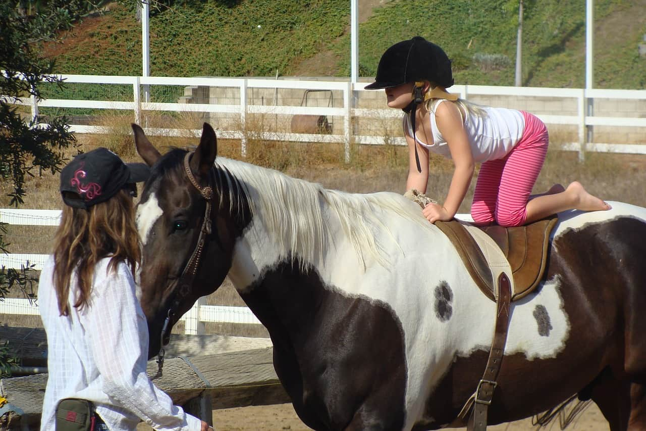 Child Horse Riding Lessons