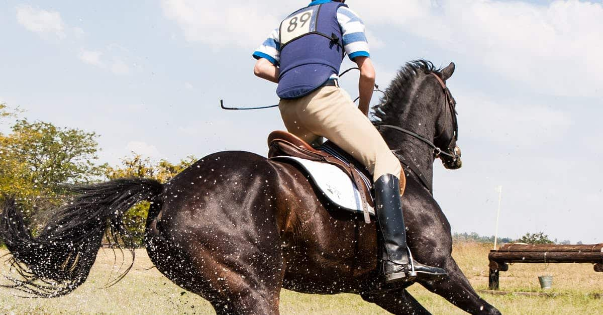 A close up of a person riding a horse