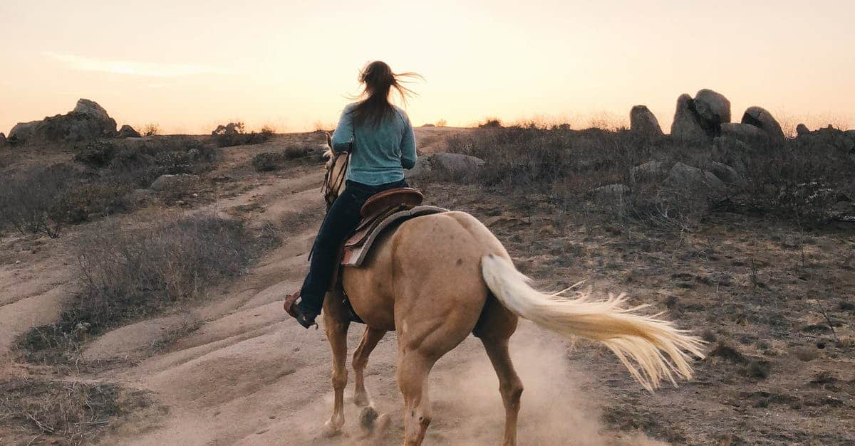 A man riding a horse on a dirt road