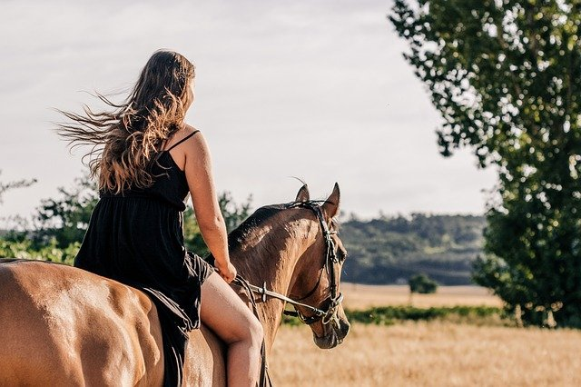 A person riding on the back of a brown horse
